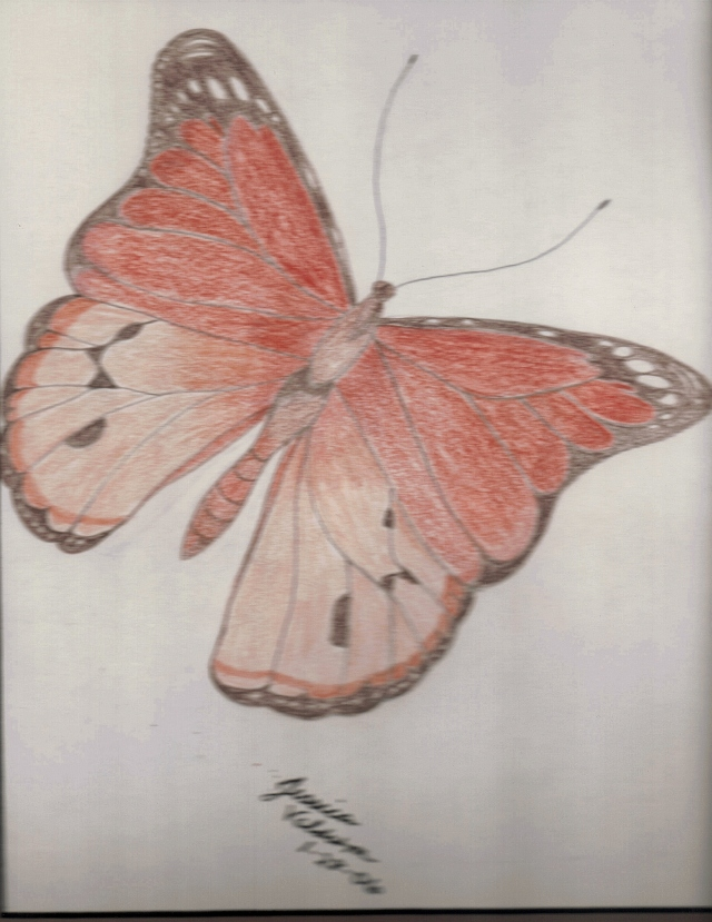 Jessica Veldstra-Butterfly in Colored Pencil